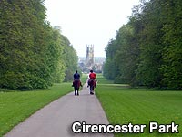 A view of Cirencester Park